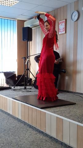 flamenko_3.jpg